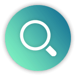search-option